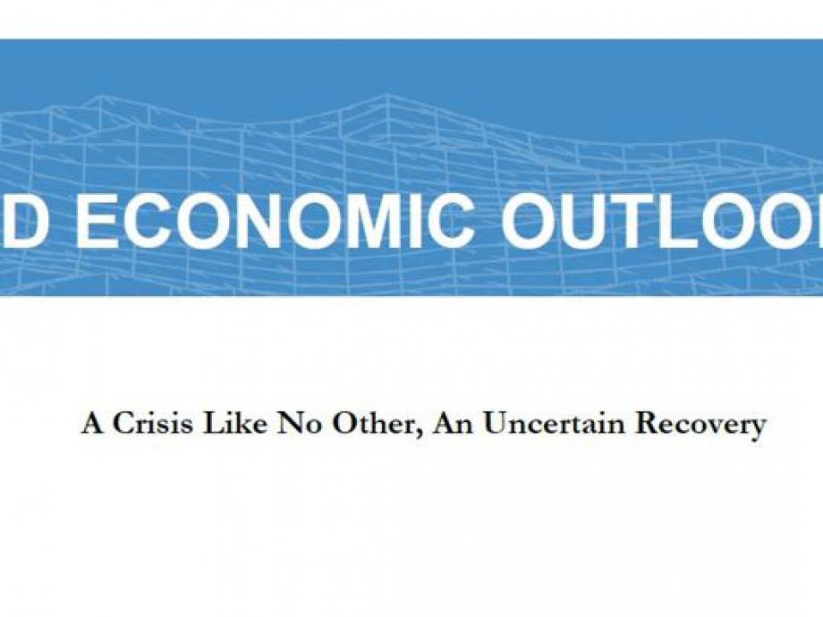 FMI copertina 3