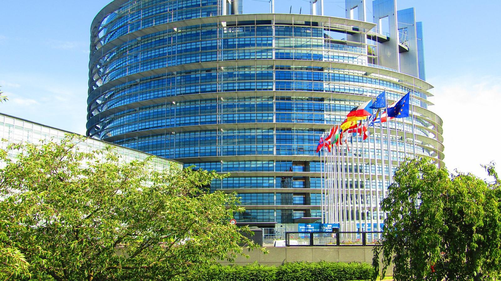 parlamento europeo_green